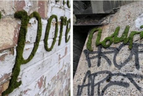 Ecological Graffiti